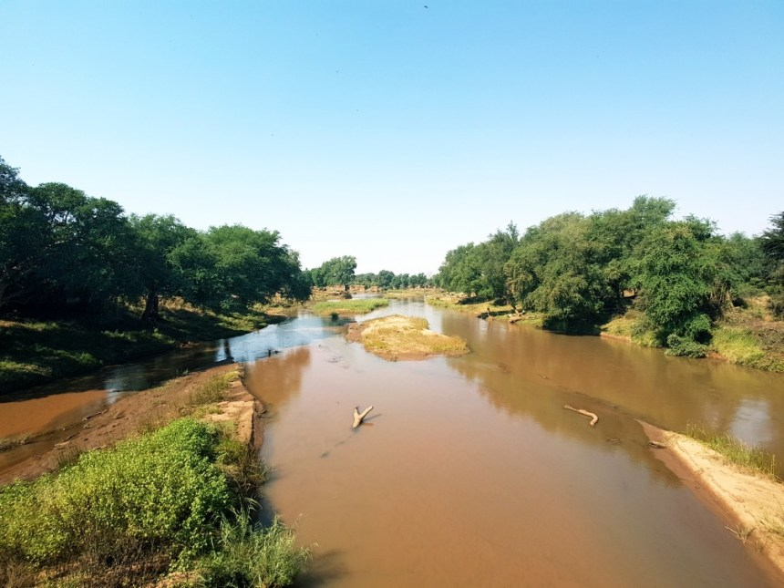 Kruger national park natuur Zuid Afrika