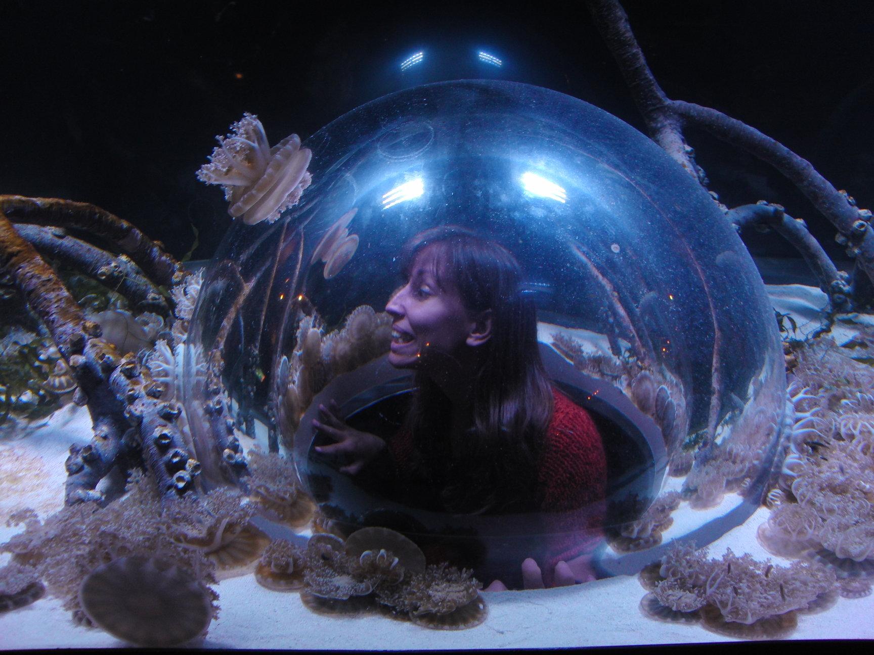 Canada luchthaven aquarium Vancouver