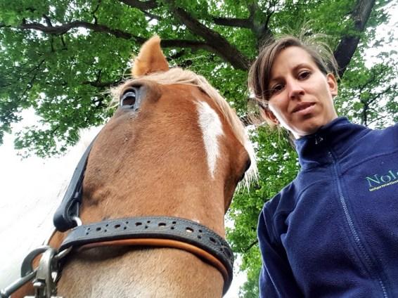 selfie met pony mislukt