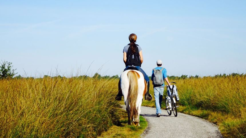 Paardrijden National Park de Hoge Veluwe