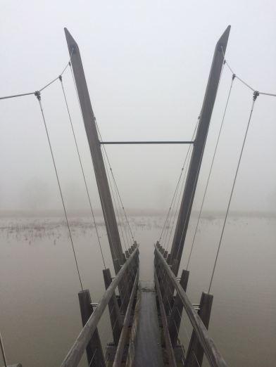 Rijn rivier Arnhem