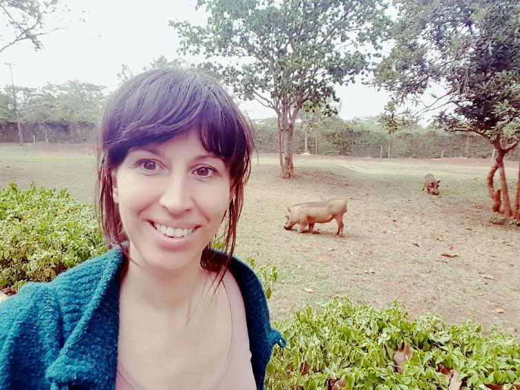 Nairobi National Park Kenia wrattenzwijn