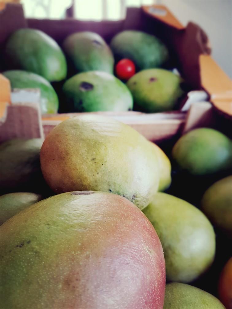 mango weekoverzicht