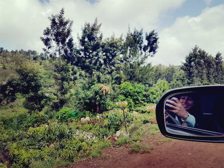 Kwekerij Kenia