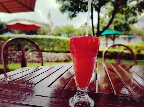 Meru Slopes hotel Kenia