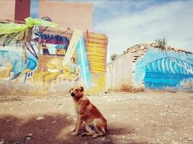 Streetart Taghazout Marokko