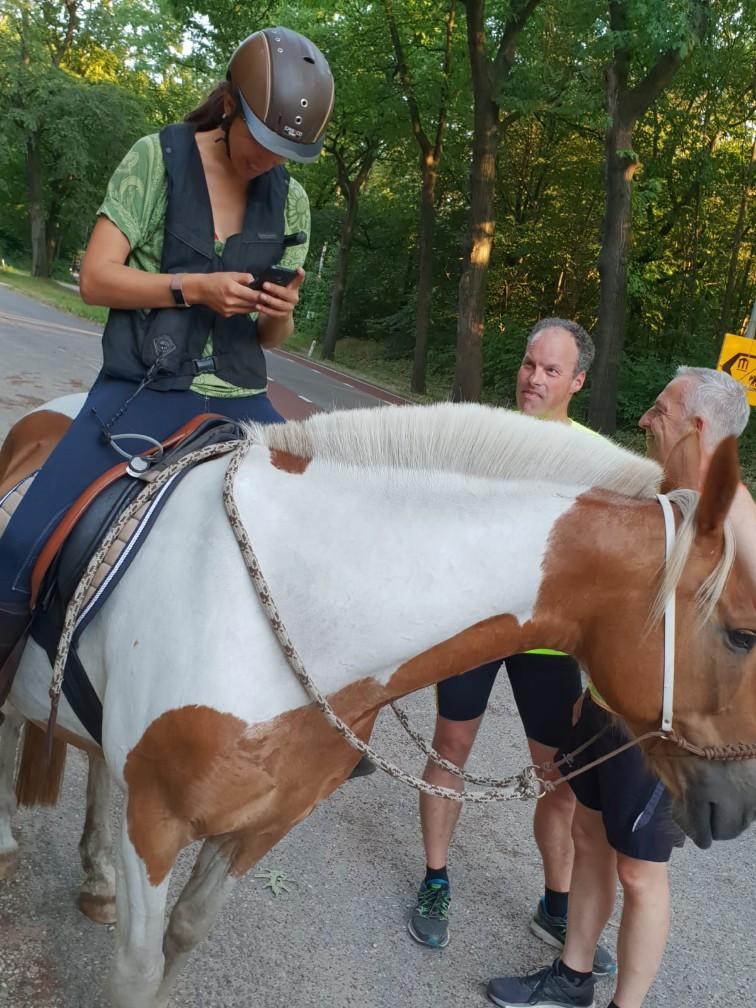 Speurtocht Arnhem te paard