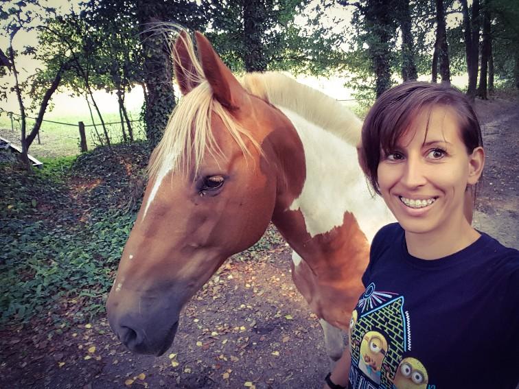 Pony loopt los mee