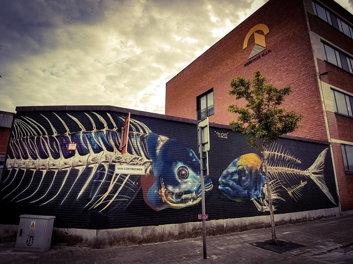 Streetart Antwerpen België