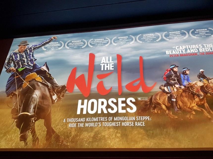 Bioscoop Leiden, all the wild horses