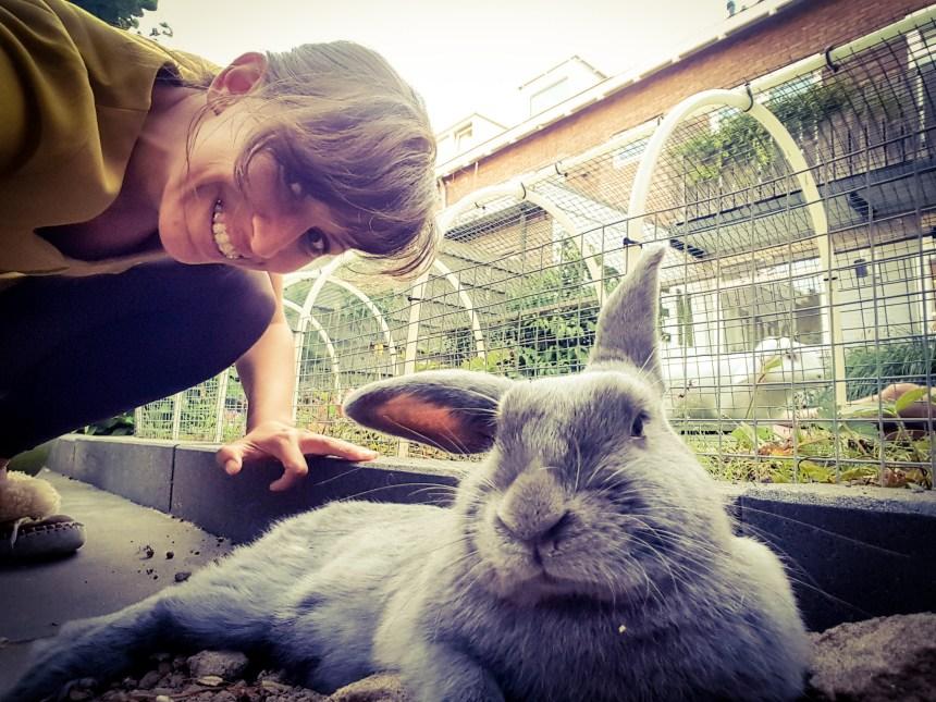 Selfie met konijn