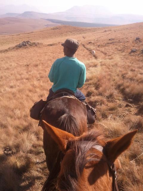 Khotso Horse Trails Zuid Afrika Drakensbergen Underberg