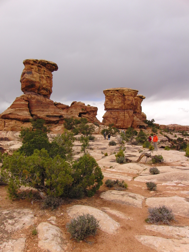 Canyonlands National Park Amerika rondreis (4)