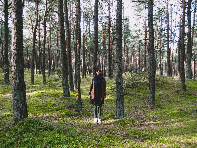 Nationaal Park Koerse Schoorwal Litouwen