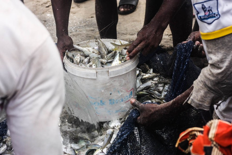 From sea to table: Bringing in the fish at Kokrobite beach, Ghana