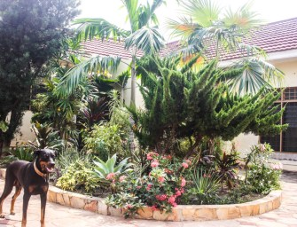Diary of MyWeku Restaurant: Planning Landscaping