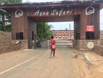 A Day Trip to Ada's Aqua Safari