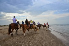 Go horseback riding on South Padre