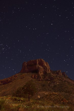 Stars Over Casa Grande, Big Bend National Park, Texas