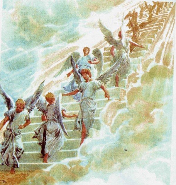 10476588_10204227714439946_4005873852454154867_o ladder of angels