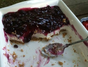 blueberry delight partly eaten 2b