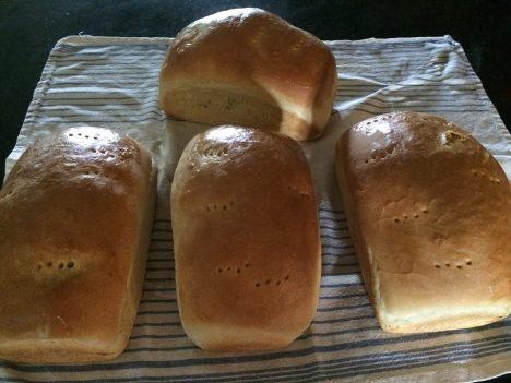 bread 4 loaves