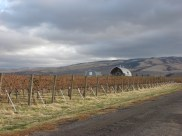 The beautiful views in Walla Walla Valley wine country