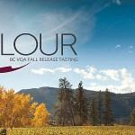 Colour BC VQA Fall Release tasting