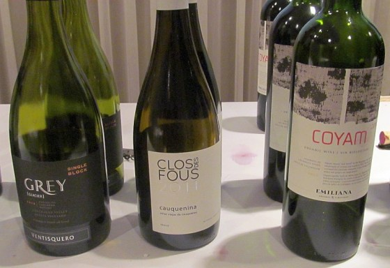 Ventisquero GCM, Clos des Fous Cauquenina, and Emiliana Coyam