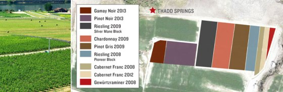 Thadd Springs Vineyard (Image courtesy Harper's Trail winery)