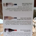 Santa Carolina New World Winery of the Year
