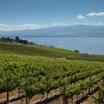 BC vineyards (Image courtesy winebc.org)