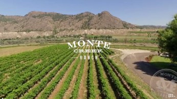 Monte Creek Ranch Winery vineyard