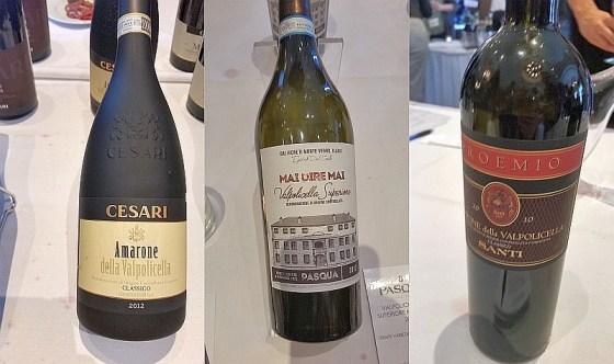 Cesari Amarone della Valpolicella, Pasqua Amarone della Valpolicella Mai Dire Mai, and Santi Amarone dellaValpolicella DOCG Classico Proemio DOCG wines