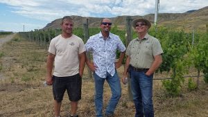 Caleb Hanaghan, Michael Bartier, and Ed Collett in the Harpers Trail Thadd Springs vineyard