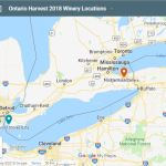 Ontario wineries interviewed for 2018 harvest