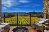 Napa Valley view of vineyards