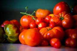 Provence Marinaside Tomato Festival Emrys Horton, EPH Photography