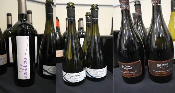 Monte Delle Vigne Callas 2015, Medici Ermete Quercioli Lambrusco Sorbara NV, and Monte Delle Vigne Lambrusco Selezione 2018 wines at VanWineFest 2020