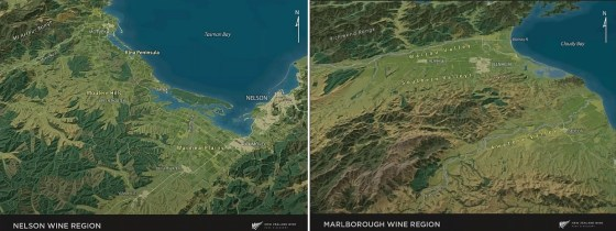 Nelson and Marlborough Wine Regions in New Zealand