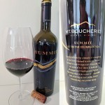 Mt. Boucherie Estate Winery SUMMIT 2017 with wine in glass