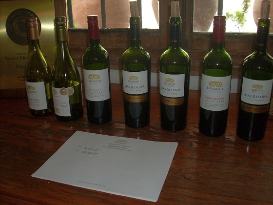 A flight of Viña Errazuriz wines both red and white