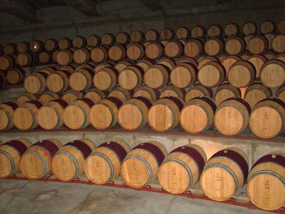 The Viña Montes barrel room where they play Gregorian chants for the maturing wine