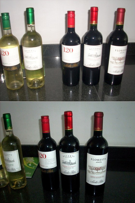 White and red wines from 120 series up to their premium levels from Vina Santa Rita