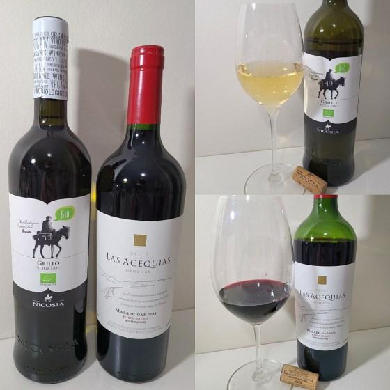 Nicosia Grillo Sicilia DOC 2018, Italy and Luis Segundo Correas Valle Las Acequias Malbec Oak 2015, Argentina with wines in glasses