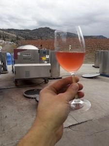 Noble Ridge secret wine for Harvest 2020