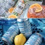 Lulu Spritz and Beach Bum Lemon Coconut coolers