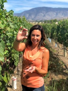 Gina with Pinot Gris Grapes (credit Nostalgia Wines Inc)