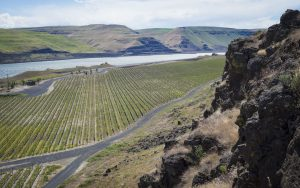 The Burn of Columbia Valley AVA (Image courtesy of Ste. Michelle Wine Estates)