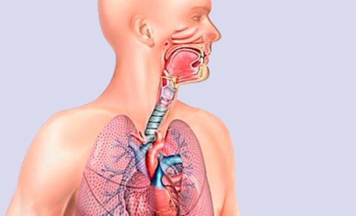 Три упражнения, которые улучшат работу дыхательной системы